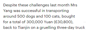 500 dogs saved from Yulin 2015