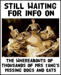 Mrs Yang 052