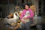 Mrs Yang pics 08